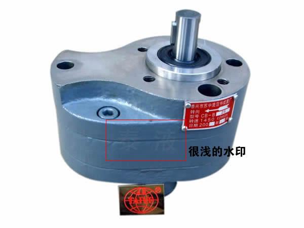 浅的泰液齿轮泵水印商标