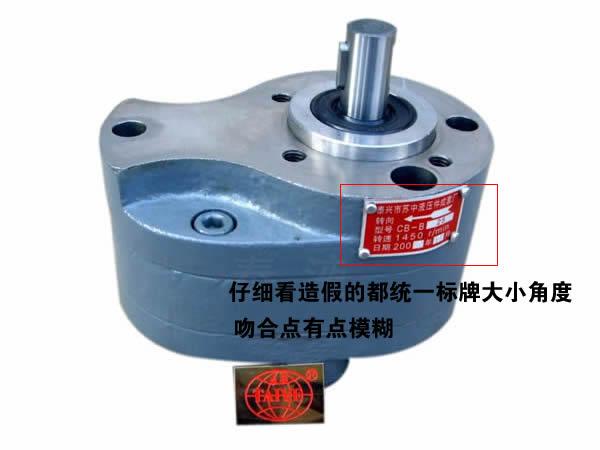 泰液齿轮泵标牌鉴别
